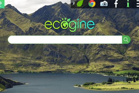 ecogine
