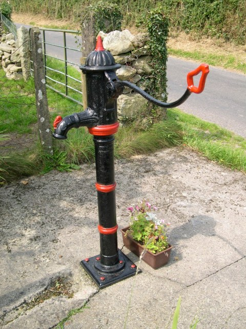 Water Pump at Tomduff Cross in the colours of Mt Leinster Rangers