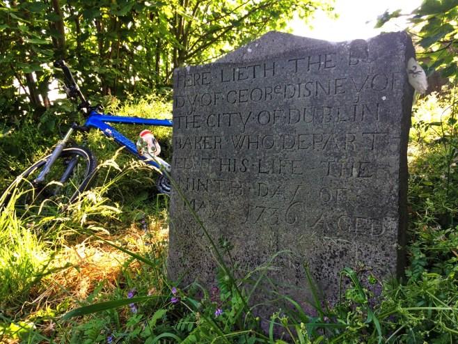 14-1-walt-disney-ancestral-graves-garryhundee-carlow