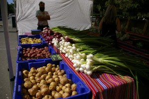 Mount Pleasant Farmer's Market