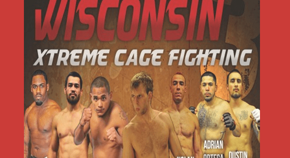 Boxing, Kickboxing, MMA, BJJ