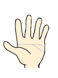 頭脳線(支線・分岐・二股)