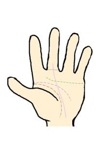 運命線(中指の基底線をつっきる)
