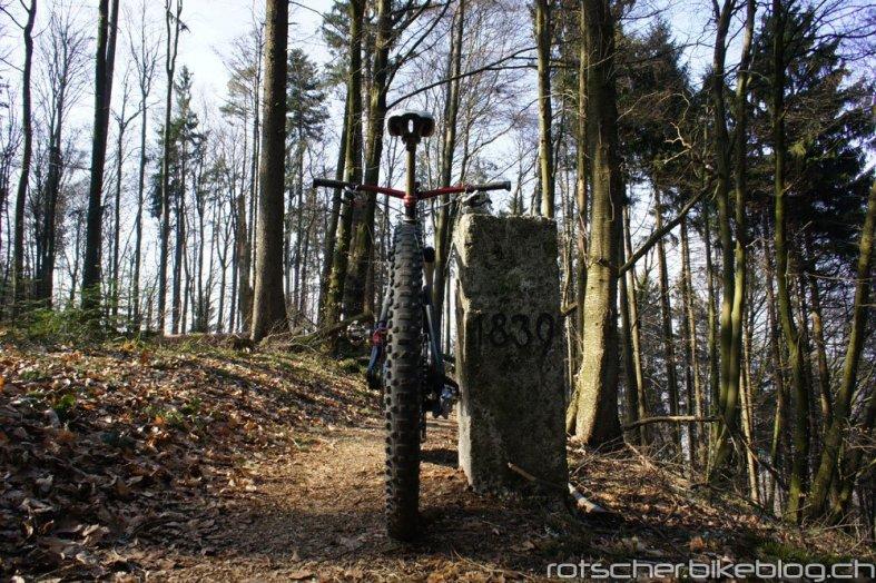 Schienerberg-23.3.12-001