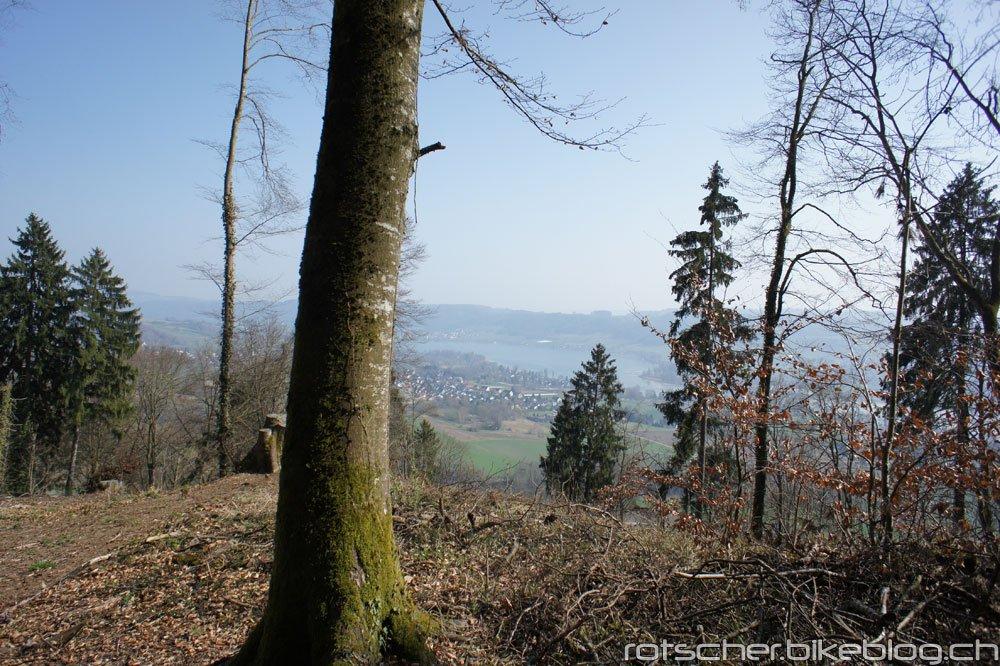 Schienerberg-23.3.12-003