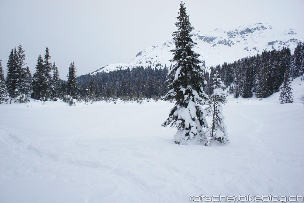 Schneeschuh-Alp-Flix-102