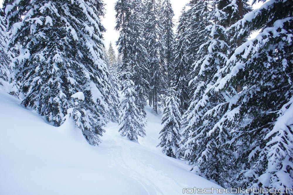 Schneeschuh-Alp-Flix-202