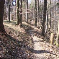 Schienerberg-Trails