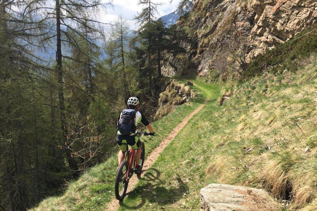 Höhenweg zwischen Zeneggen und Törbel