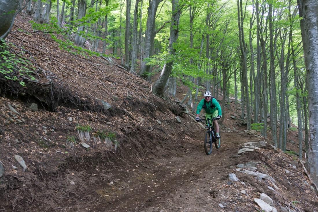 Neu gebaggerter Trail