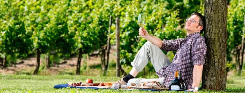 Weingut Plackner