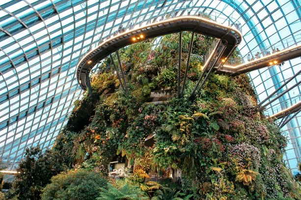 Cloud Forest - Garden by the Bay Singapour