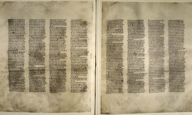 idea_sized-codex1-add-ms-43725