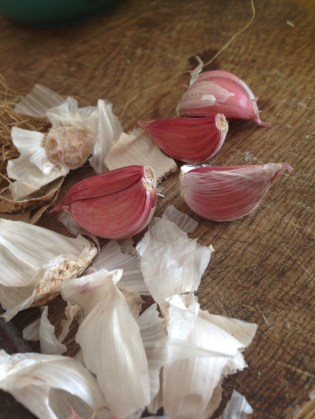 Garlic - from the garden