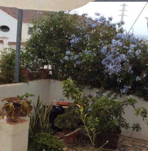 The rain in Spain …