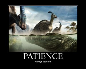 Patience Always Pays Off