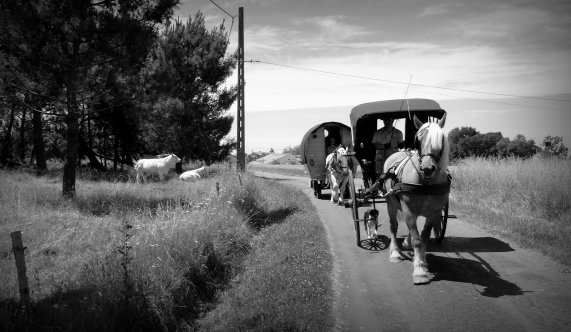 Le convoi sur la route départementale