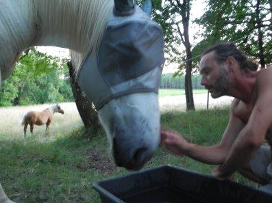 cheval, masque