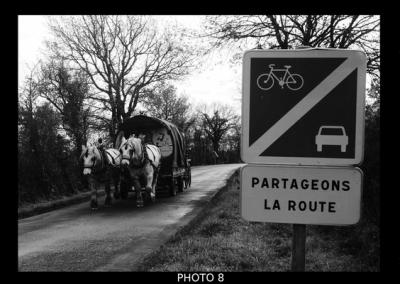 panneau, route, roulotte, chevaux