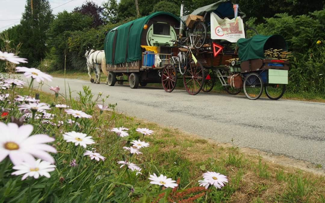 La vie en roulotte : la logistique de déplacement et de gestion des chevaux