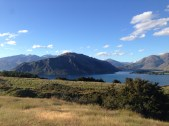 On top of hill with mtn bike trails descending in all directions, Wanaka