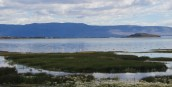 Lago Argentina in El Calafate - surprised by flamingos!!