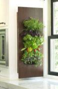 Amazing indoor wall herb garden ideas (20)