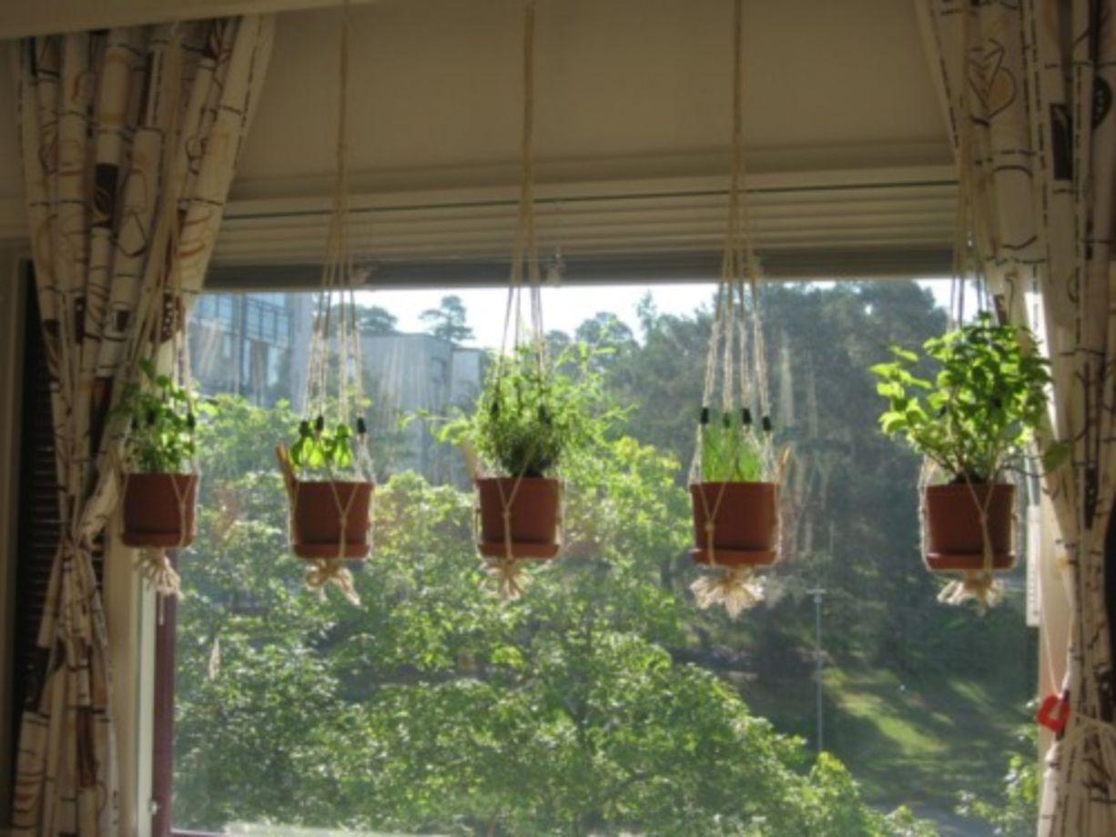 21 Incredible Indoor Hanging Herb Garden
