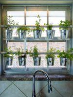Incredible indoor hanging herb garden (15)