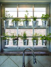 Incredible indoor hanging herb garden (15)