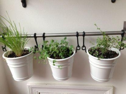 Incredible indoor hanging herb garden (8)