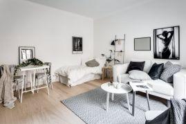 Inspiring modern studio apartment design ideas (3)