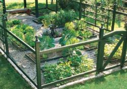 Stunning vegetable garden fence ideas (18)