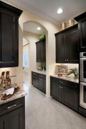 Stylish dark brown cabinets kitchen 61