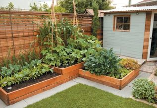 Affordable backyard vegetable garden designs ideas 01