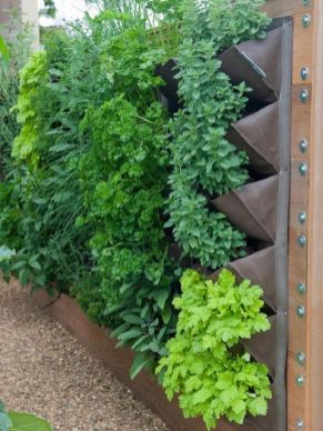 Affordable backyard vegetable garden designs ideas 31