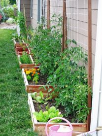 Affordable backyard vegetable garden designs ideas 35