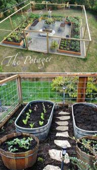 Affordable backyard vegetable garden designs ideas 57