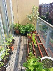 Amazing small balcony garden design ideas 22