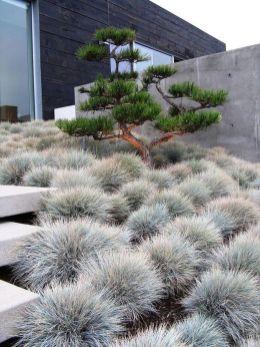 Beautiful modern japanese garden landscape ideas 23