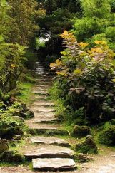 Beautiful modern japanese garden landscape ideas 59