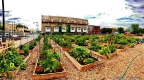 35 Cute and Simple School Garden Design Ideas - Round Decor