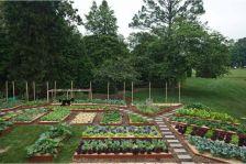Cute and simple school garden design ideas 31