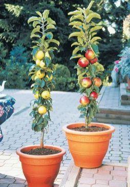 Cute and simple tiny patio garden ideas 08