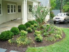 Inspiring small front garden ideas on a budget 18