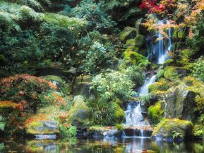 Stunning japanese garden ideas plants you will love 03