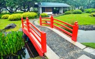 Stunning japanese garden ideas plants you will love 22