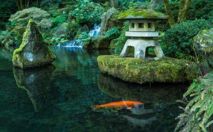 Stunning japanese garden ideas plants you will love 23