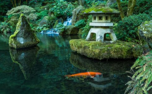 Stunning japanese garden ideas plants you will love 23