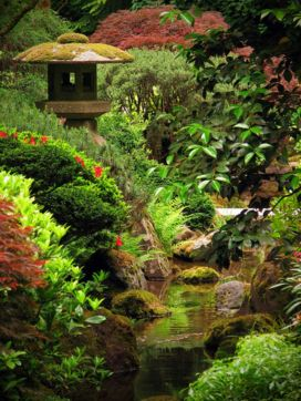 Stunning japanese garden ideas plants you will love 24